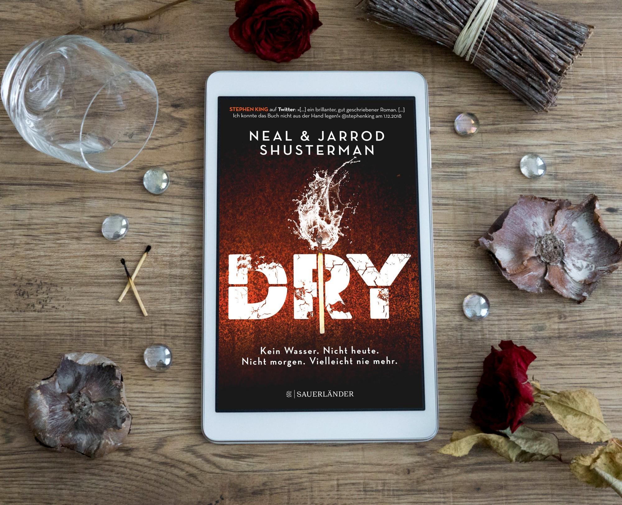 DRY – Neal und Jarrod Shusterman graphic